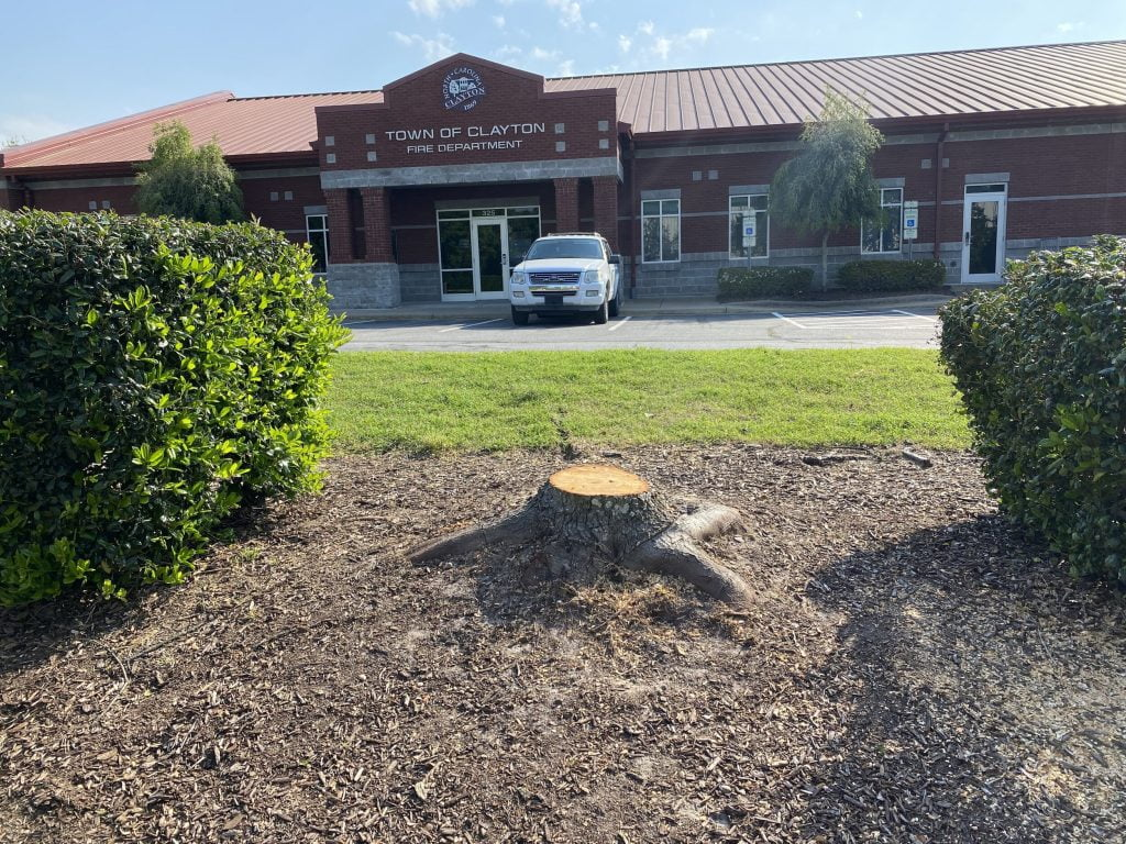 Clayton Fire Stump Removal