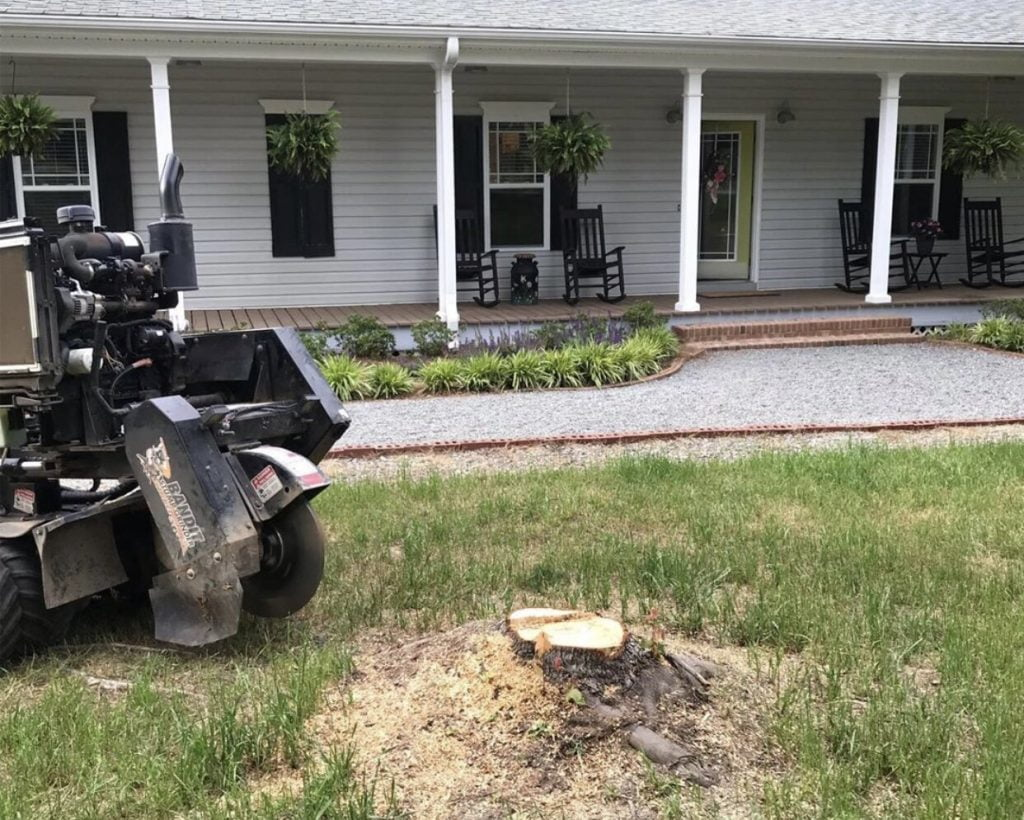 Should you hire a Stump Grinding professional Machine
