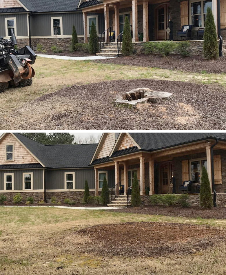NC Stump Grinding Before and After